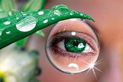 Глаз Алмаз обладает мгновенной эффективностью