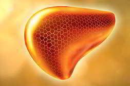 Алкозерокс восстанавливает клетки печени
