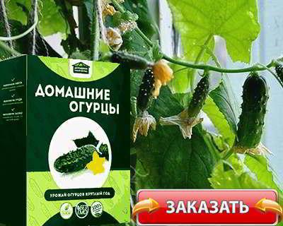 Мини ферма овощей купить