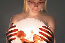 Lucem Plus стимулирует работу репродуктивной системы