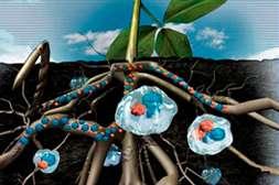 Польза Гидрактива Плюс в равномерном распределении воды.