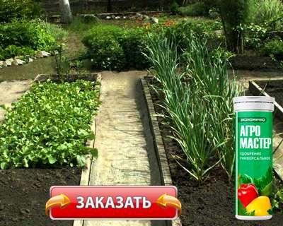 Удобрение Агромастер купить по доступной цене.